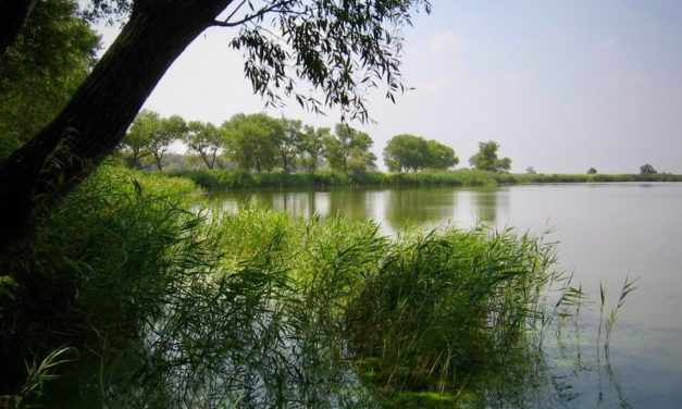 Река Самара (приток Днепра). (Общественное достояние)