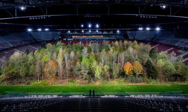 Посадить 300 деревьев на футбольном стадионе предлагает инсталляция «Для леса - вечное притяжение природы» базельского художника Klaus Littmann по рисунку Max Peintner. (© Gerhard Maurer)